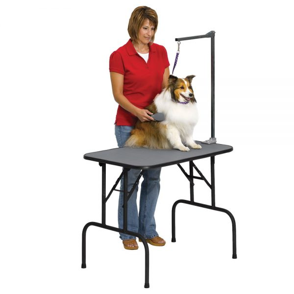 Grooming table