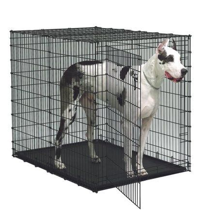 MidWest Single Door Dog Cage for XXL dogs